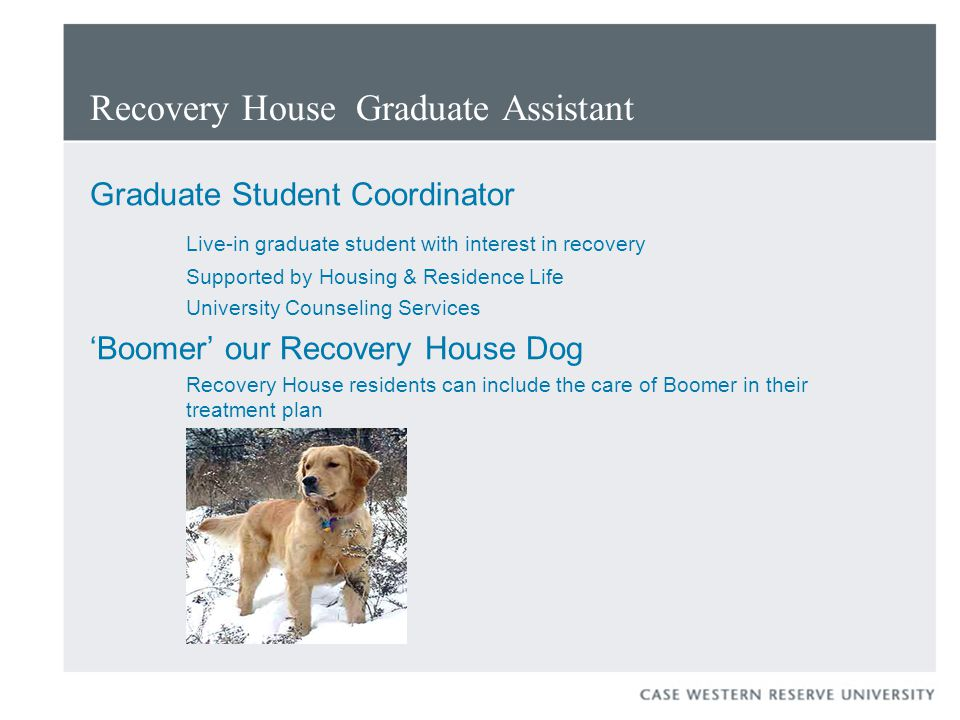 Recovery House Graduate Assistant Graduate Student Coordinator Live-in graduate student with interest in recovery Supported by Housing & Residence Life University Counseling Services 'Boomer' our Recovery House Dog Recovery House residents can include the care of Boomer in their treatment plan