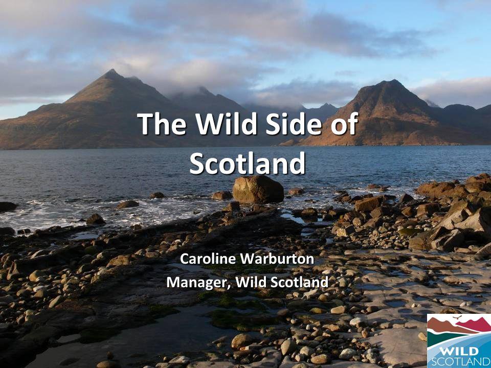 The Wild Side of Scotland Caroline Warburton Manager, Wild Scotland