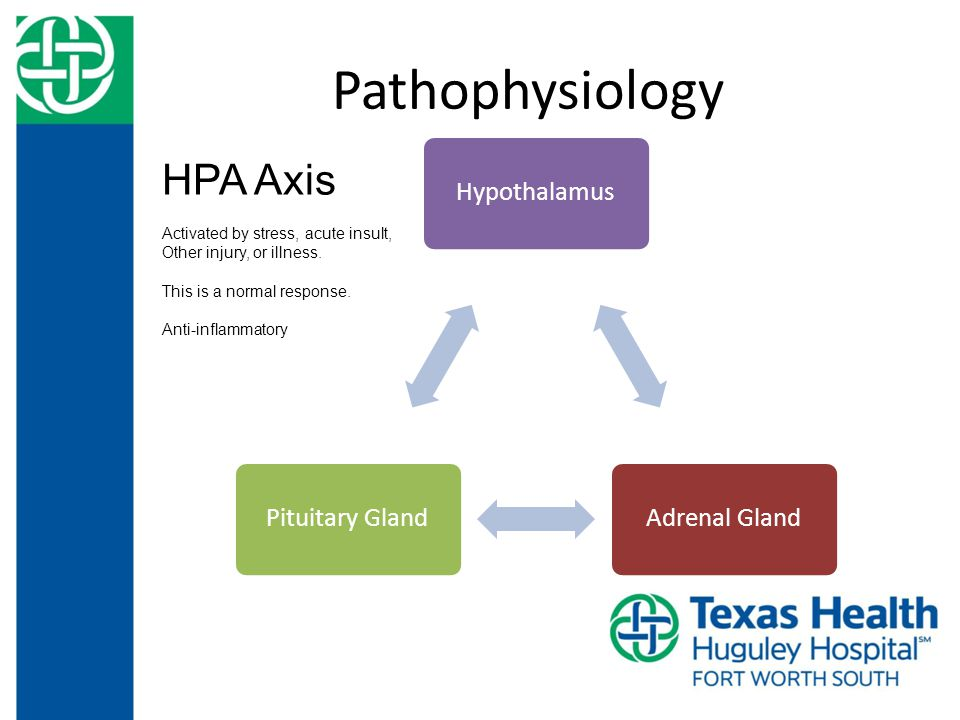 Pathophysiology Hypothalamus Adrenal GlandPituitary Gland HPA Axis Activated by stress, acute insult, Other injury, or illness.