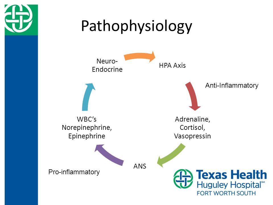 Pathophysiology HPA Axis Adrenaline, Cortisol, Vasopressin ANS WBC's Norepinephrine, Epinephrine Neuro- Endocrine Anti-Inflammatory Pro-inflammatory