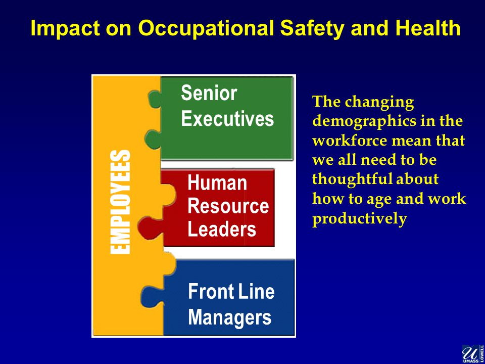 Impact on Occupational Safety and Health EMPLOYEES Senior Executives Human Resource Leaders Front Line Managers The changing demographics in the workforce mean that we all need to be thoughtful about how to age and work productively