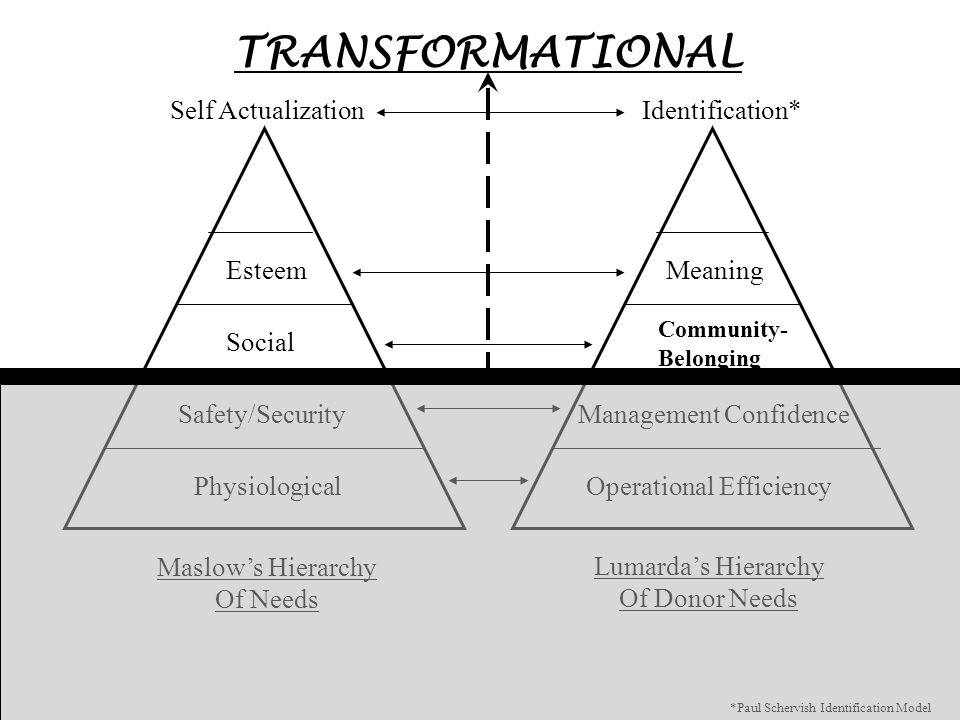 Maslow's Hierarchy Of Needs Lumarda's Hierarchy Of Donor Needs PhysiologicalOperational Efficiency Safety/SecurityManagement Confidence Social EsteemM