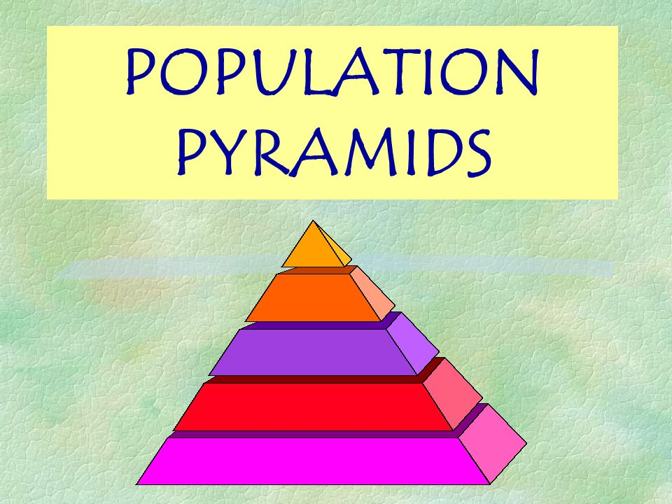Objectives §WHAT is a population pyramid.§HOW to read a population pyramid.