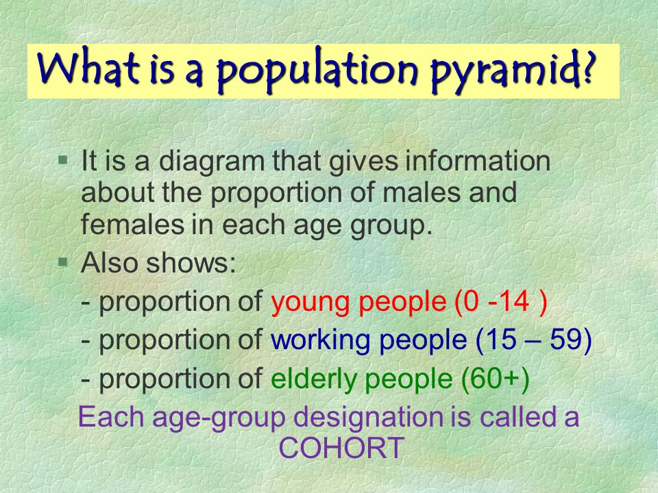 What is a population pyramid.