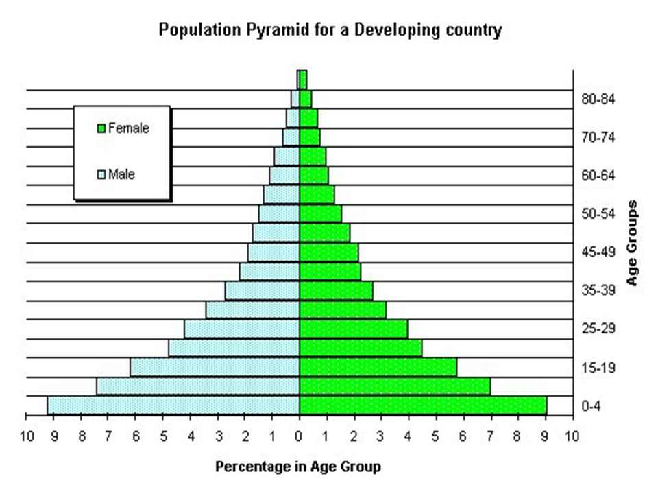 Types of Population Pyramid 1.Triangular-shaped 2.