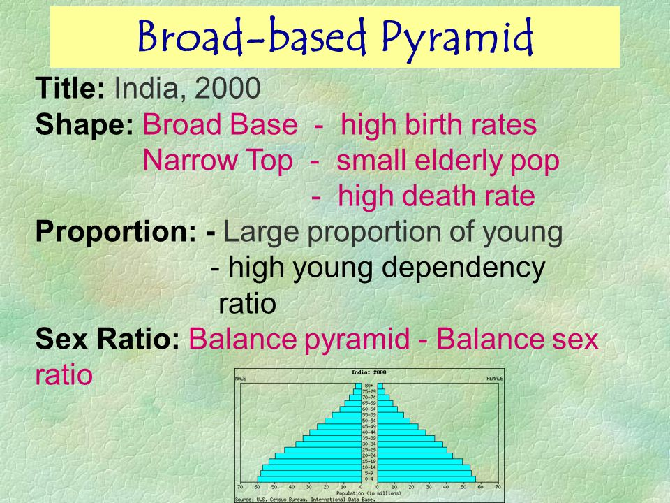 Broad-based Pyramid Title: India, 2000 Shape: Broad Base - high birth rates Narrow Top - small elderly pop - high death rate Proportion: - Large proportion of young - high young dependency ratio Sex Ratio: Balance pyramid - Balance sex ratio