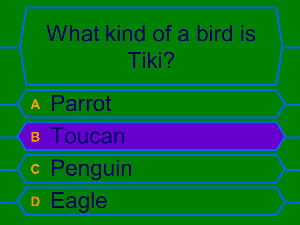 What kind of a bird is Tiki A Parrot B Toucan C Penguin D Eagle