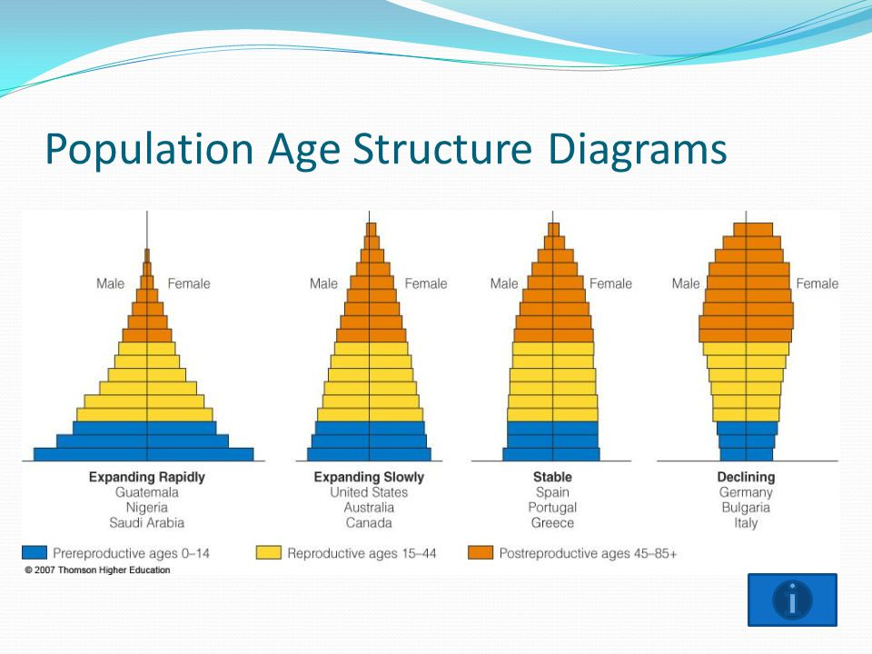 Population Age Structure Diagrams