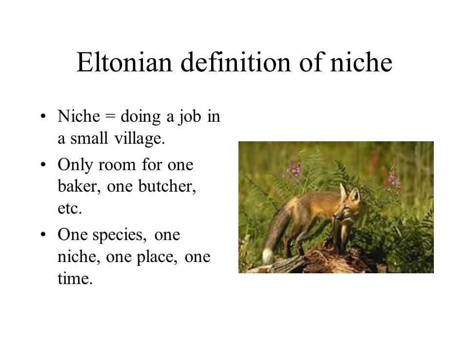 Eltonian definition of niche Niche = doing a job in a small village.