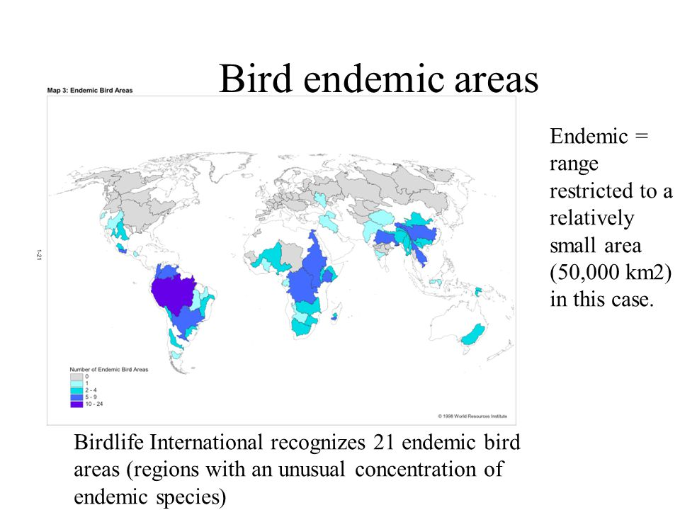 Bird endemic areas Birdlife International recognizes 21 endemic bird areas (regions with an unusual concentration of endemic species) Endemic = range restricted to a relatively small area (50,000 km2) in this case.