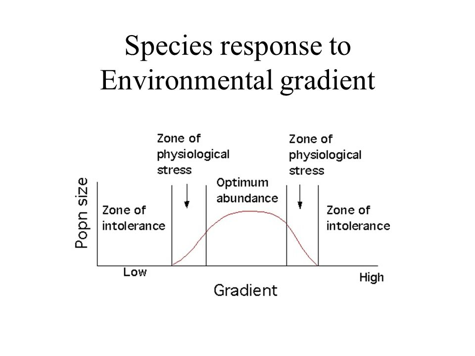 Back to ecological gradients We can predict that along an ecological gradient a species will rise to an optimum, decline and be replaced by another species rising to an optimum and so on.