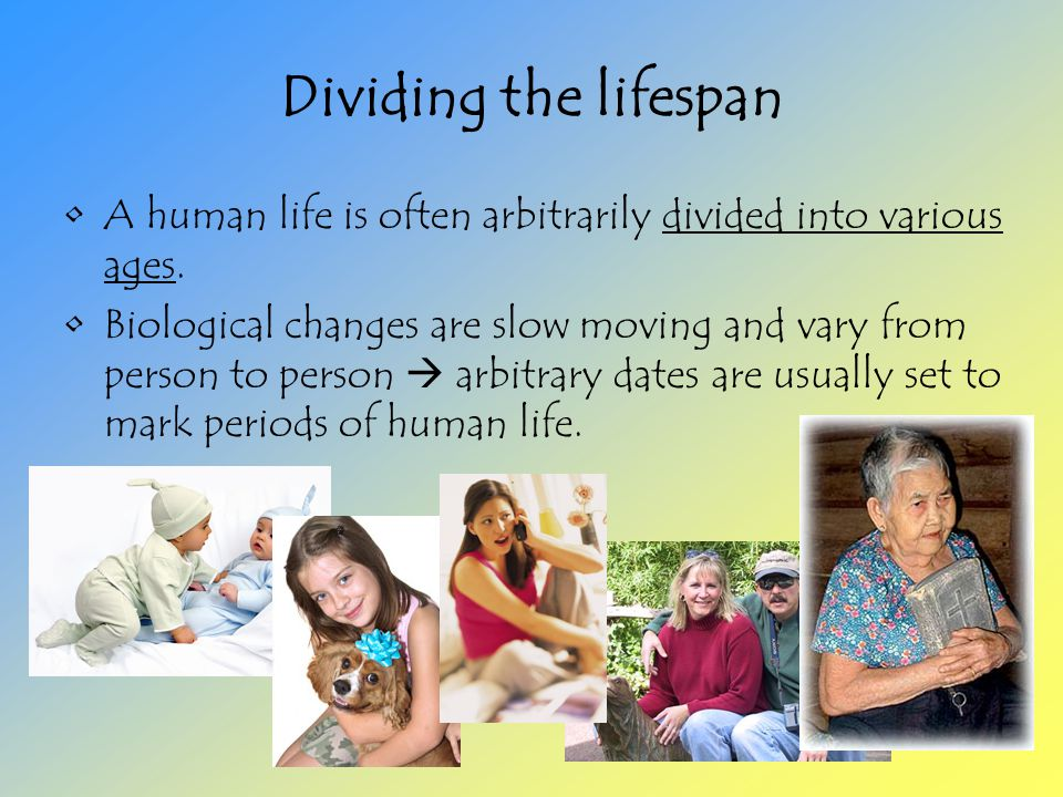 Dividing the lifespan A human life is often arbitrarily divided into various ages.
