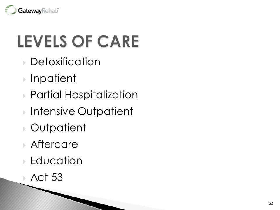  Detoxification  Inpatient  Partial Hospitalization  Intensive Outpatient  Outpatient  Aftercare  Education  Act 53 35