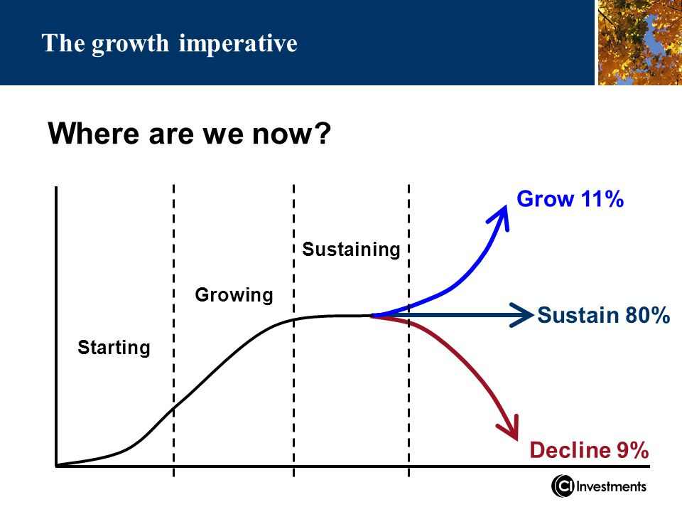 Where are we now Grow 11% Decline 9% Sustain 80% Starting Growing Sustaining The growth imperative