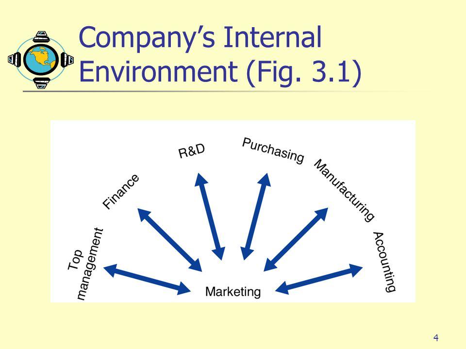 4 Company's Internal Environment (Fig. 3.1)