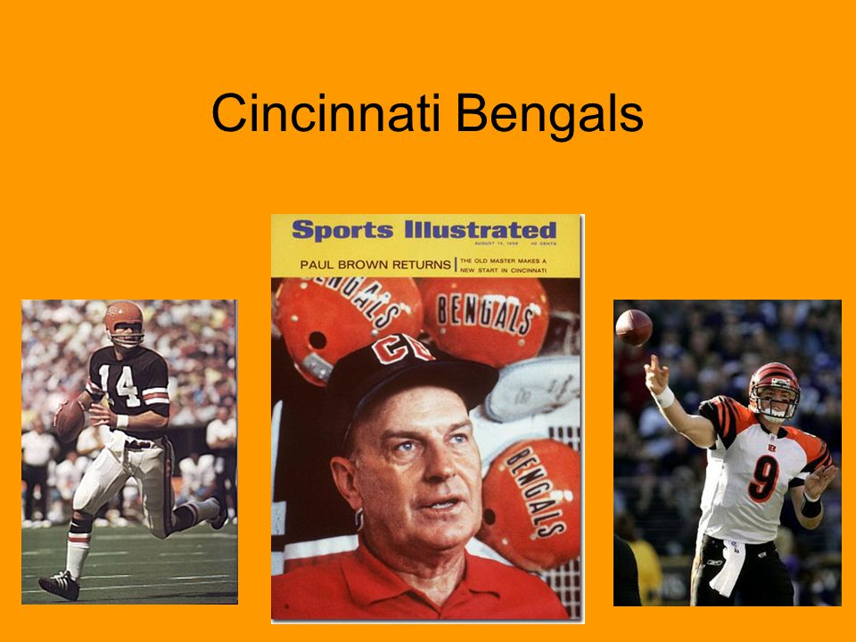 The Bengals finished with a 12-4 record –Best in the AFC and winning the AFC Central Ken Anderson won the NFL MVP award throwing for 3,754 yards and 29 TDs Rookie Cris Collinsworth caught 8 TDs and had 1,009 receiving yards