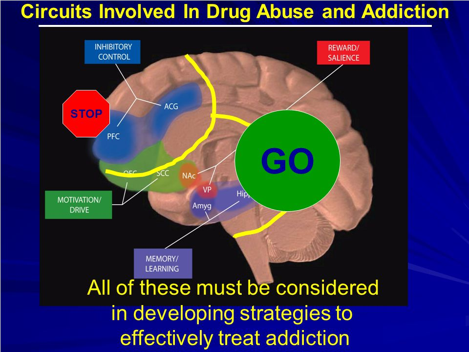 Circuits Involved In Drug Abuse and Addiction All of these must be considered in developing strategies to effectively treat addiction STOP GO