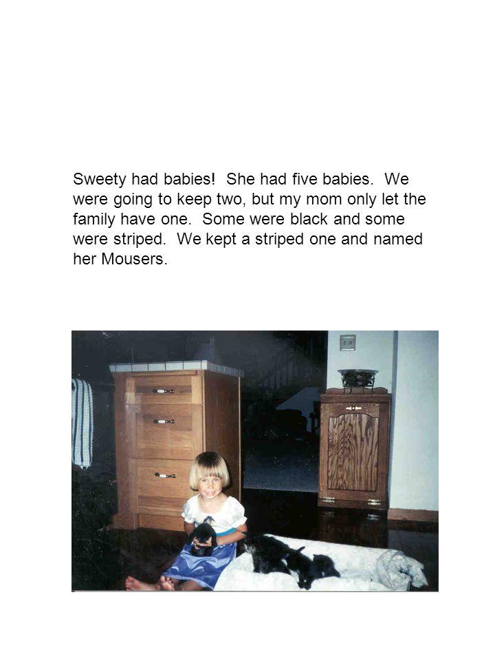 Sweety had babies. She had five babies.