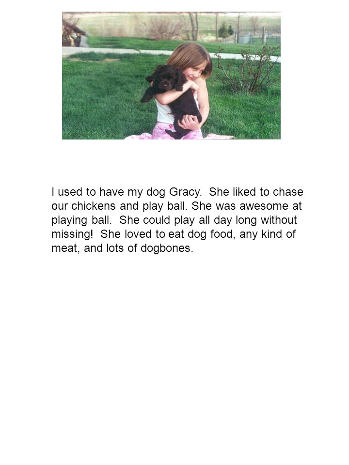 I used to have my dog Gracy. She liked to chase our chickens and play ball.
