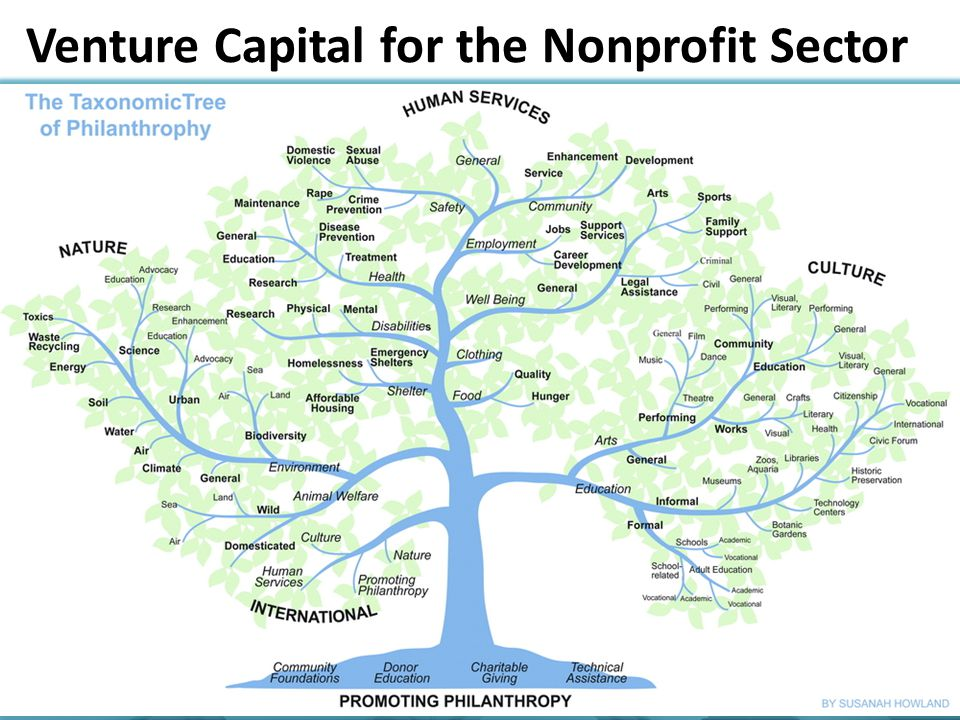 Venture Capital for the Nonprofit Sector
