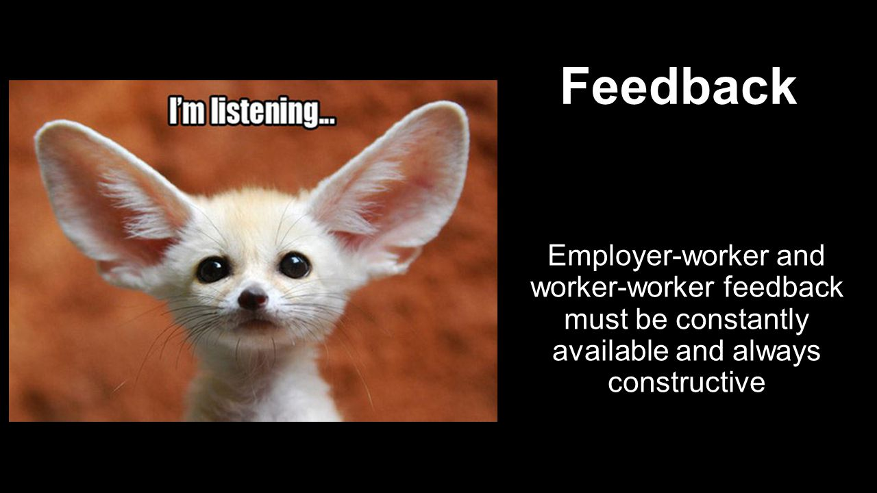 Employer-worker and worker-worker feedback must be constantly available and always constructive Feedback