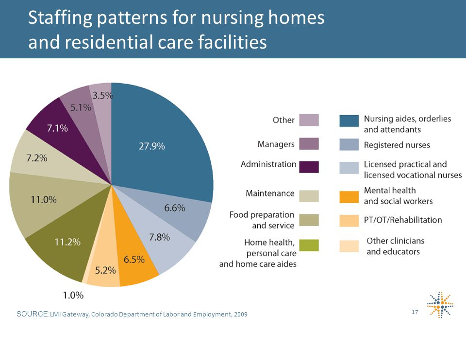 17 Staffing patterns for nursing homes and residential care facilities SOURCE: LMI Gateway, Colorado Department of Labor and Employment, 2009