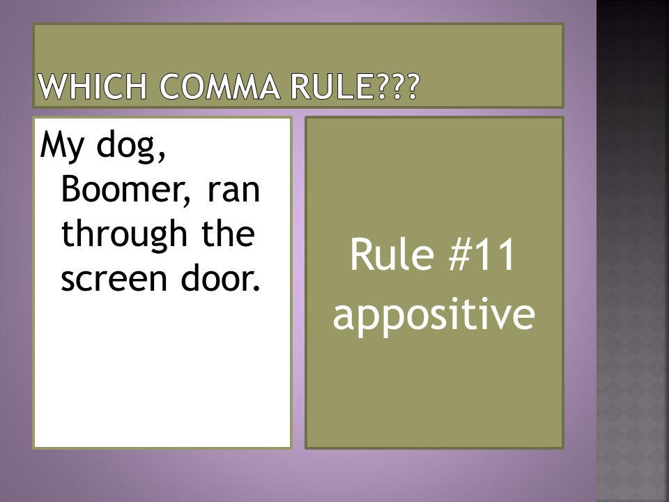 Rule #11 appositive