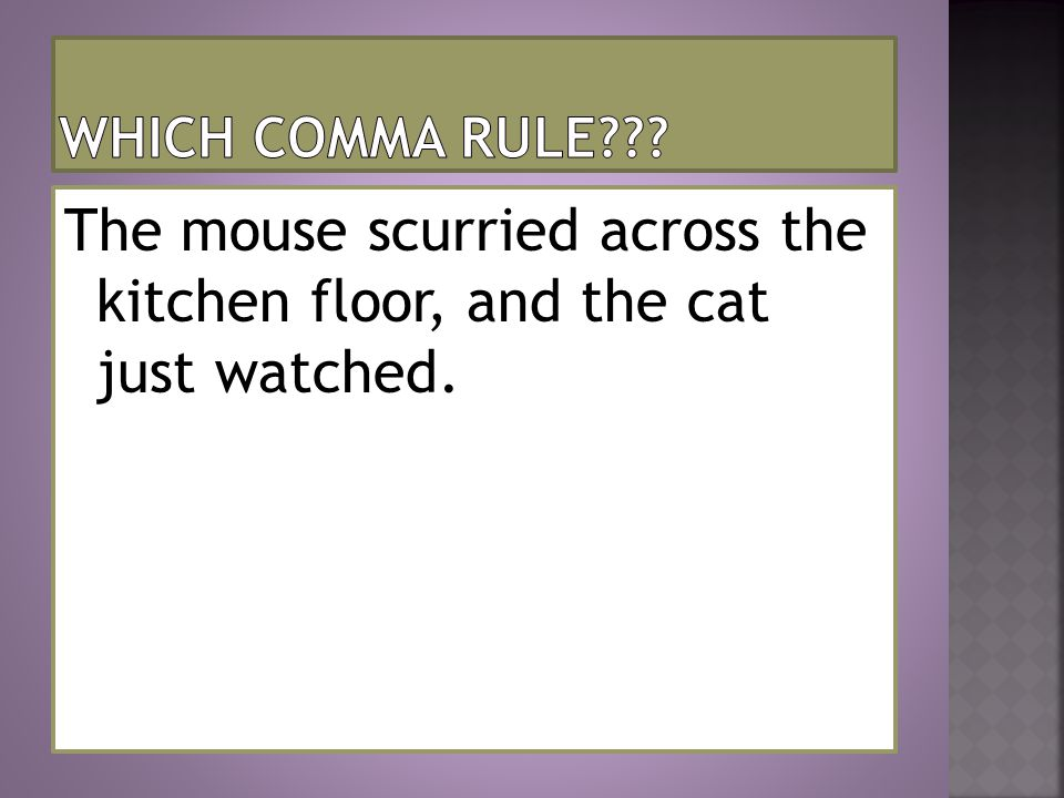 The mouse scurried across the kitchen floor, and the cat just watched.