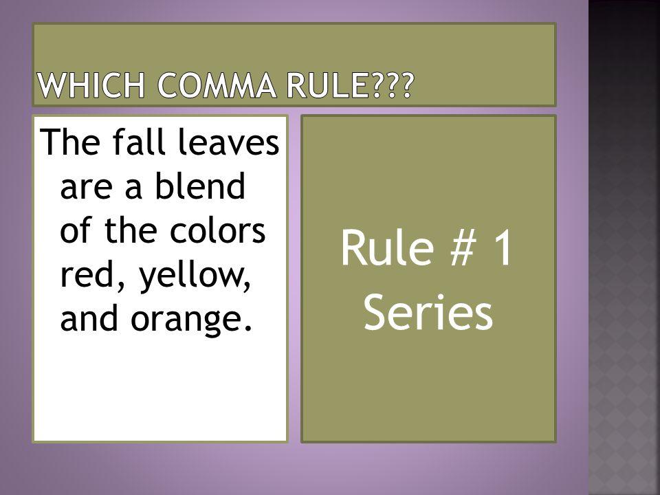 Rule # 1 Series