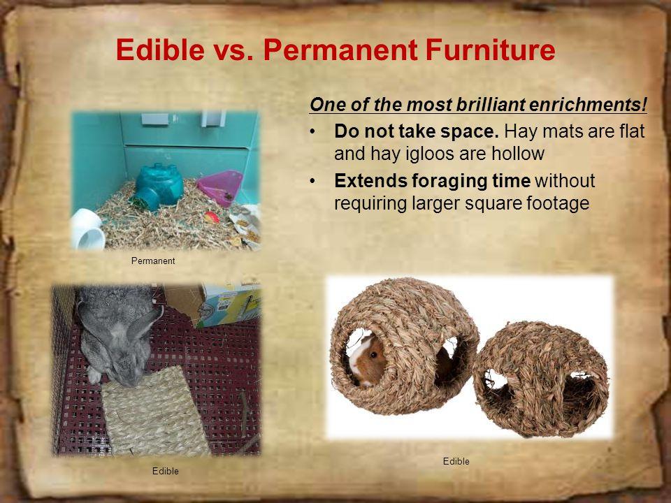 Edible vs.Permanent Furniture One of the most brilliant enrichments.