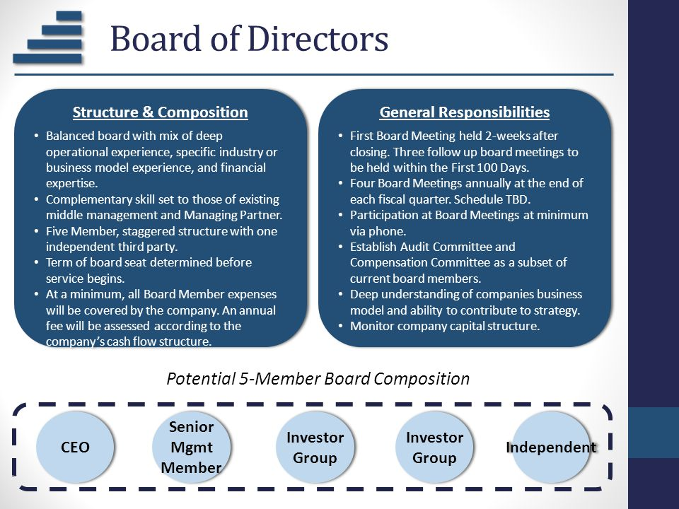 Board of Directors CEO Senior Mgmt Member Investor Group Independent Potential 5-Member Board Composition Structure & Composition Balanced board with