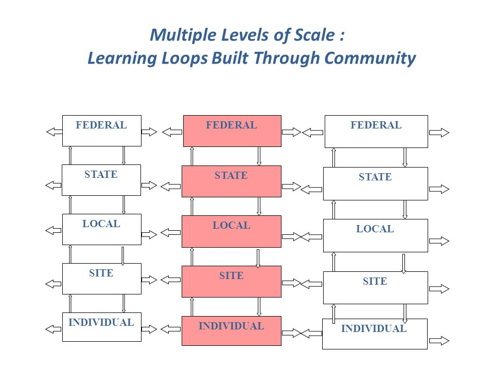 Multiple Levels of Scale : Learning Loops Built Through Community FEDERAL STATE LOCAL SITE INDIVIDUAL FEDERAL STATE LOCAL SITE INDIVIDUAL FEDERAL STATE LOCAL SITE INDIVIDUAL