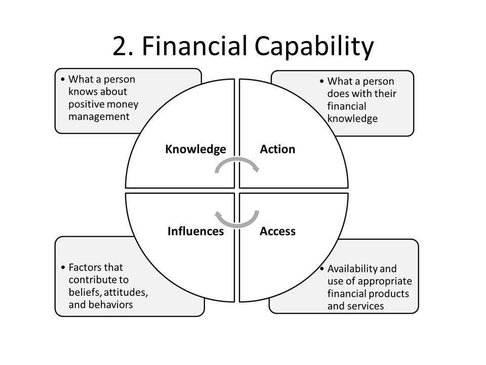 2. Financial Capability