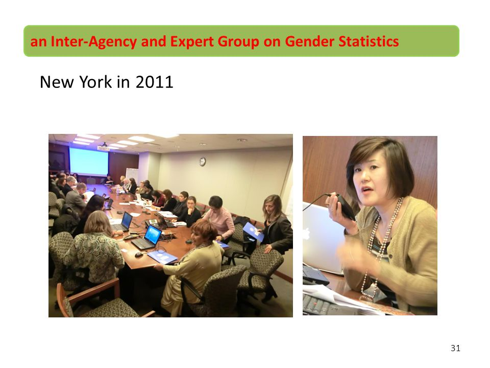 31 an Inter-Agency and Expert Group on Gender Statistics New York in 2011