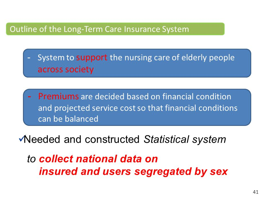 41 Needed and constructed Statistical system to collect national data on insured and users segregated by sex -System to support the nursing care of el