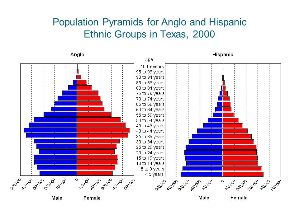 Population Pyramids for Anglo and Hispanic Ethnic Groups in Texas, 2000