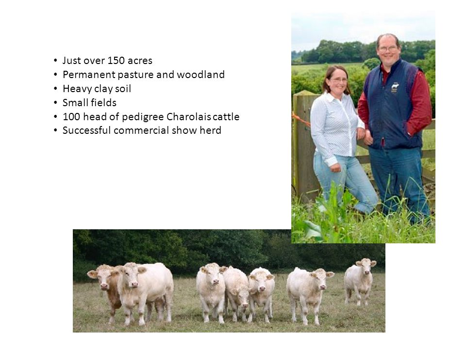 Just over 150 acres Permanent pasture and woodland Heavy clay soil Small fields 100 head of pedigree Charolais cattle Successful commercial show herd
