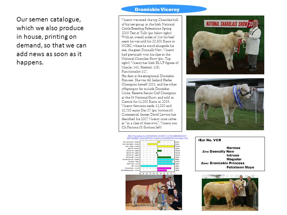 Our semen catalogue, which we also produce in house, printing on demand, so that we can add news as soon as it happens. Dromiskin Viceroy Viceroy was