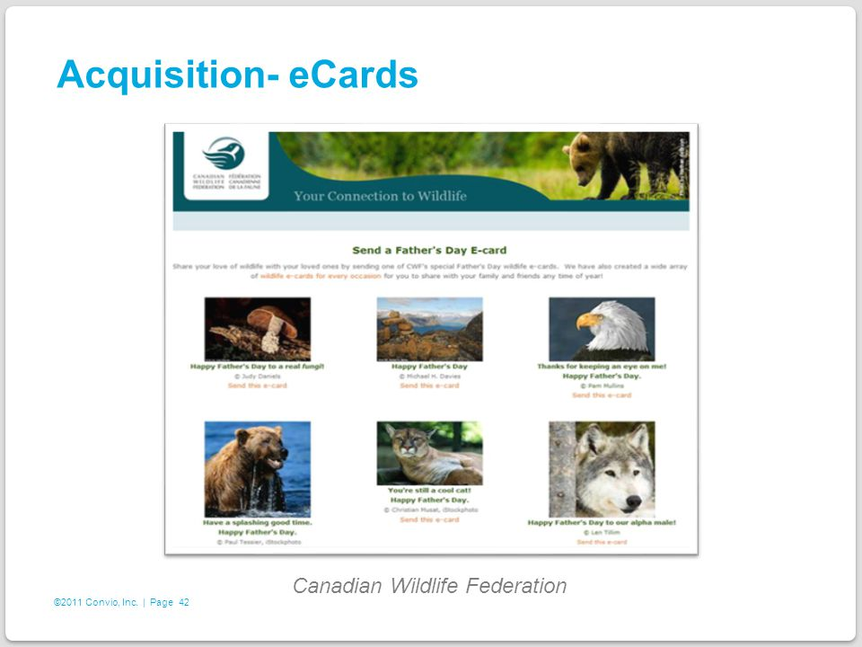 42 ©2011 Convio, Inc. | Page Acquisition- eCards Canadian Wildlife Federation