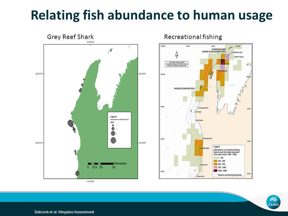 Babcock et al. Ningaloo Assessment Relating fish abundance to human usage Grey Reef SharkRecreational fishing