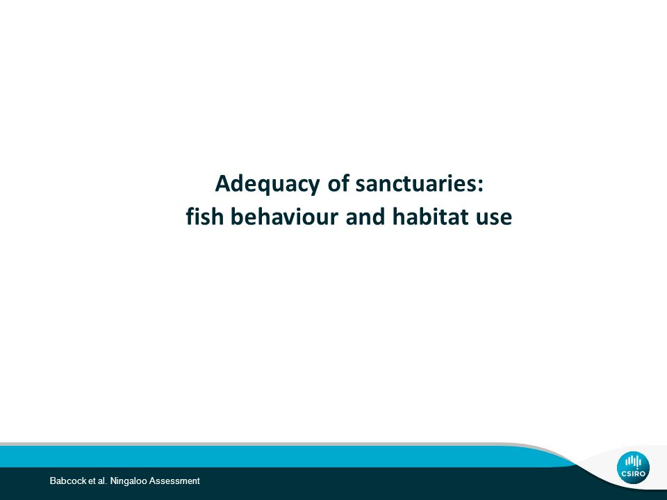 Babcock et al. Ningaloo Assessment Adequacy of sanctuaries: fish behaviour and habitat use
