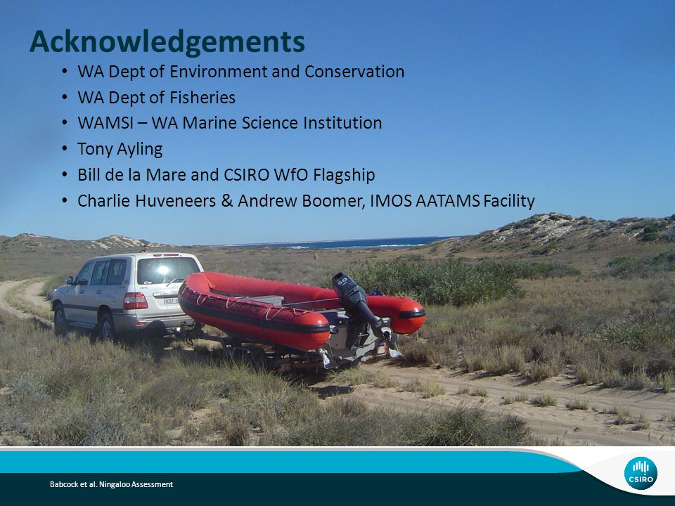 Acknowledgements WA Dept of Environment and Conservation WA Dept of Fisheries WAMSI – WA Marine Science Institution Tony Ayling Bill de la Mare and CSIRO WfO Flagship Charlie Huveneers & Andrew Boomer, IMOS AATAMS Facility Babcock et al.