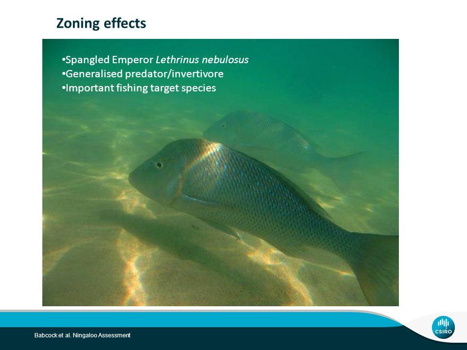 Babcock et al. Ningaloo Assessment Zoning effects Spangled Emperor Lethrinus nebulosus Generalised predator/invertivore Important fishing target speci