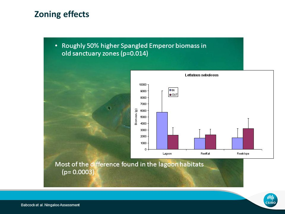 Babcock et al. Ningaloo Assessment Zoning effects Roughly 50% higher Spangled Emperor biomass in old sanctuary zones (p=0.014) Most of the difference