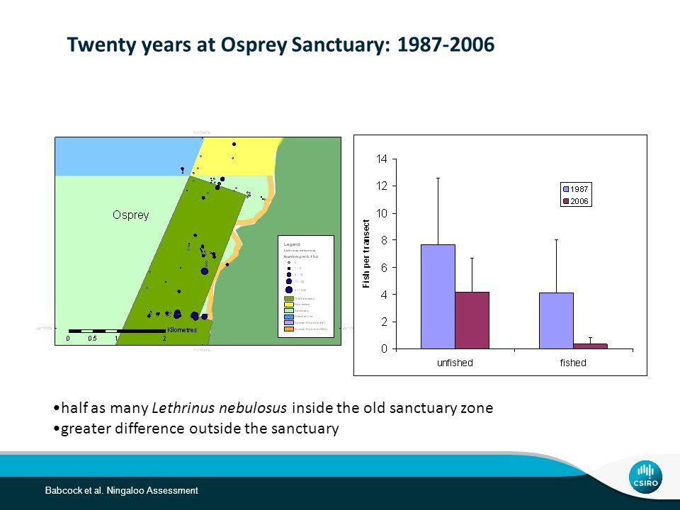 Babcock et al. Ningaloo Assessment Twenty years at Osprey Sanctuary: 1987-2006 half as many Lethrinus nebulosus inside the old sanctuary zone greater