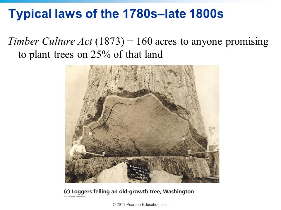 © 2011 Pearson Education, Inc. Typical laws of the 1780s–late 1800s Timber Culture Act (1873) = 160 acres to anyone promising to plant trees on 25% of