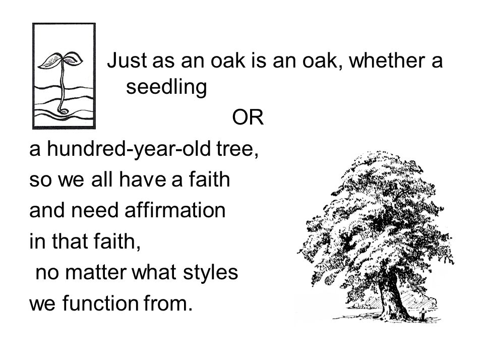 Just as an oak is an oak, whether a seedling OR a hundred-year-old tree, so we all have a faith and need affirmation in that faith, no matter what styles we function from.