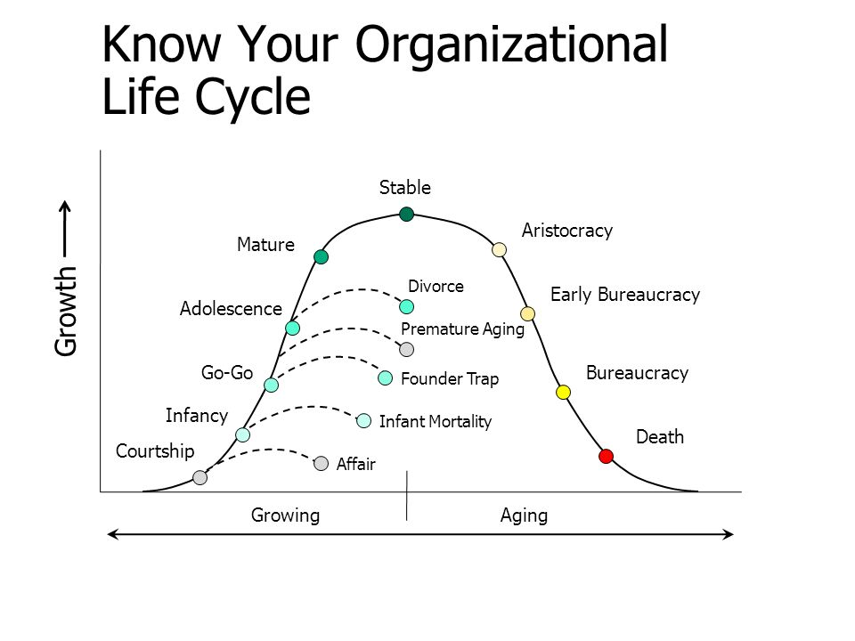 Know Your Organizational Life Cycle Growth Stable Aristocracy Early Bureaucracy Bureaucracy Death Mature Adolescence Go-Go Infancy Courtship Divorce P