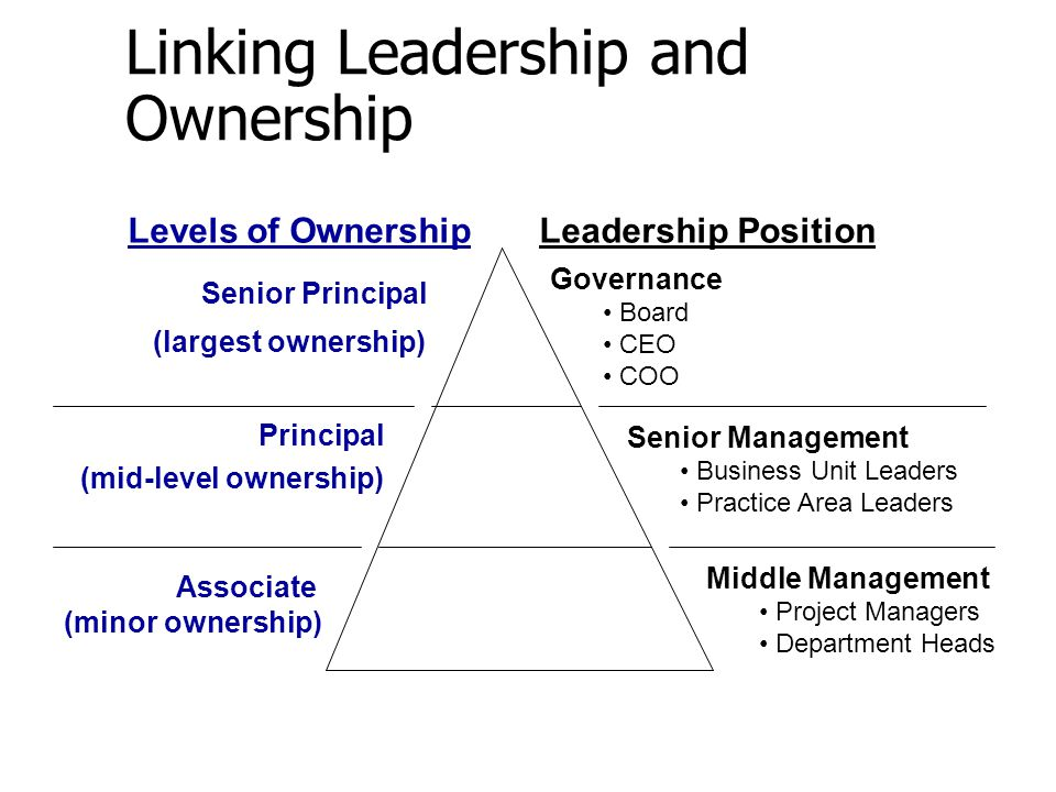 Linking Leadership and Ownership Governance Board CEO COO Senior Management Business Unit Leaders Practice Area Leaders Middle Management Project Mana