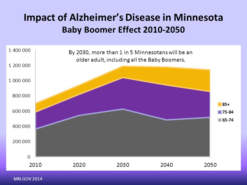 Impact of Alzheimer's Disease in Minnesota Baby Boomer Effect 2010-2050 By 2030, more than 1 in 5 Minnesotans will be an older adult, including all the Baby Boomers.